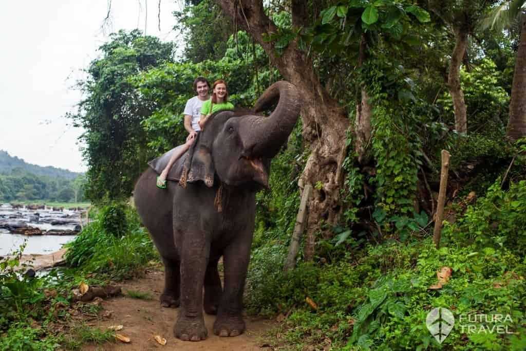 Egzotikus utak, külföldi esküvő, nászút: Sri Lanka